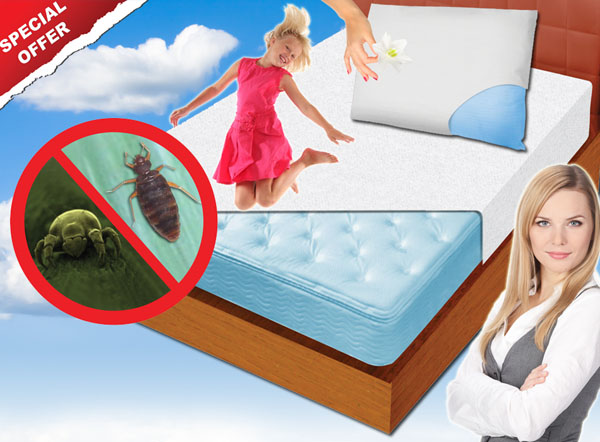 Bed Bug Cover
